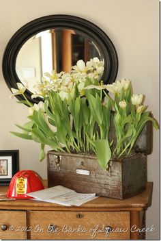 Tulips in the Toolbox: How to