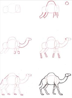 art desenho Learn to draw: Dromedary - Graphic / Illustration - Art Tutorial Easy Animal Drawings, Animal Sketches, Easy Drawings, Drawing Sketches, Drawing Lessons, Drawing Techniques, Learn To Draw, Art Tutorials, Graphic Illustration