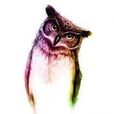 The wise Mr. Owl Art Print by I. K. Stephens