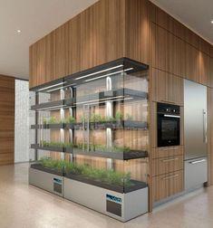 Kitchen Design Gallery, Interior Design Kitchen, Aquaponique Diy, Küchen Design, House Design, Booth Design, Indoor Farming, Herb Garden In Kitchen, Cuisines Design