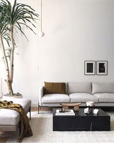 Find the perfect sofa at The TRNK Collection! This modern sofa has a slim, low profile and is so comfortable too!