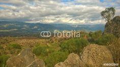 Landscapes Etna, broom and lava stone, Sicily Italy - Acquista questa foto stock ed esplora foto simili in Adobe Stock Lava, Sicily Italy, Golf Courses, Marketing, Landscape, Stone, Outdoor, Outdoors, Scenery