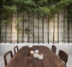 love the bamboo garden in the outdoor dining space. All it needs is a small source of running water.
