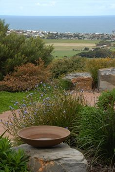 Bush garden, garden features, water features in the garden, amazing gardens, Coastal Gardens, Small Gardens, Outdoor Gardens, Spot Design, Design Studio, Water Features In The Garden, Garden Features, Landscaping With Rocks, Garden Landscaping