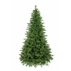 Moderná zelená jedľa na Vianoce Herbs, Herb, Spice