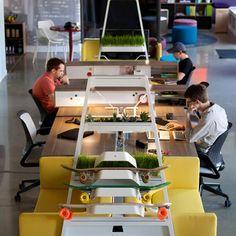 good modular system that is easy to change and also includes planters and a yellow sofa. modulares system für mehrere arbeitsplätze. pflanzen peppen das ganze auf. gelbes sofa.
