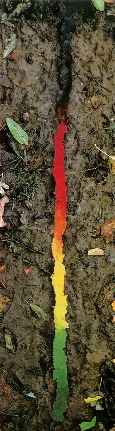 Andy Goldsworthy♡♥•✿•♥•✿♡