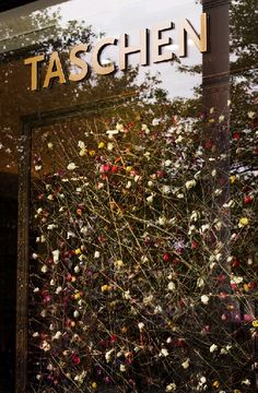 Taschen's entry for 'Chelsea in Bloom 2013′ by Rebecca Louise Law http://www.rebeccalouiselaw.com