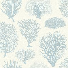Seafern Blue  wallpaper by Cole & Son