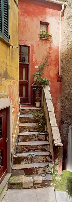 Tellaro, Italy - great steps, interesting little window but I think the door could be a little more inquisitive