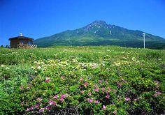 沓形岬公園と利尻富士