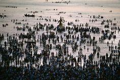 Colores de la India - FotosMundo.net