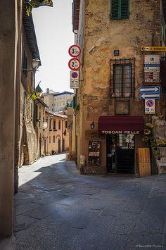 Pieles toscanas - Montepulciano, Toscana (Italia).