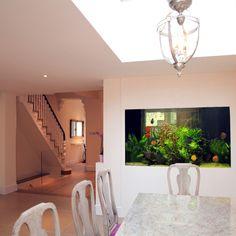 Vitro House - Aquarium Architecture Custom Aquariums, Aquarium Architecture, Tropical Fish, Fish Tank, Villa, Colours, Studio, Mirror, House