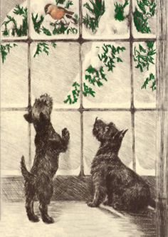 Scottie Dogs Spy A Bird At Snowy Wintry Window Note Card s Scottish Terrier… Baby Dogs, Dogs And Puppies, Dog Cards, Dog Pin, Vintage Dog, Shabby, Terrier Dogs, Westies, Christmas Dog