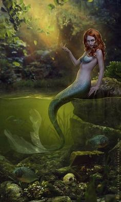 I love all fantasy and mythical stuff, but my favorite ones are mermaids.So this is a collection of mermaid images I've been picking all over the internet. Whenever possible I indicate source and author. Fantasy Mermaids, Real Mermaids, Mermaids And Mermen, Mythological Creatures, Fantasy Creatures, Mythical Creatures, Siren Mermaid, Mermaid Diy, Vintage Mermaid