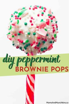 Absolutely delicious and enticing, these DIY peppermint brownie pops are super easy to make! Easily impress your party guests by learning how to make these party favors with our step-by-step tutorial here.