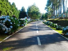 The road to the Shillong Helipad