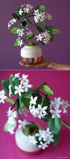 Gorgeous DIY Jasmine Plant with paper from www.paperpapers.com #spons#paperflower #svg #freepattern