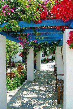 Colors of the Greek islands. Beautiful!! Love these colors!                                                                                                                                                                                 More