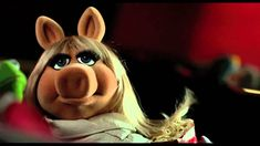 Miss Piggy in the Yellow/Red Zone.