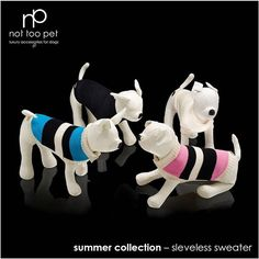 summer collection... details of sunshine style  not too pet luxury accessories for dogs made in italy #nottoopet #summercollection #madeinitaly #luxury #accessories #dog #dogs #chihuahua #chiuy #chihuahuaofinstagram #chihuahuathai #chihuahualovers #dogslover #smalldogs #pet #pets #petstagram #petfashion #genuineleather #art #design #fashion #style #love #cutie #amazing #beautiful #instadogs #weeklyfluff  Photo By: nottoopet  http://bit.ly/teacupdogshq