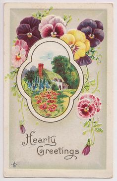 """Pansies, """"Hearty Greetings"""" antique postcard dated 1913"""