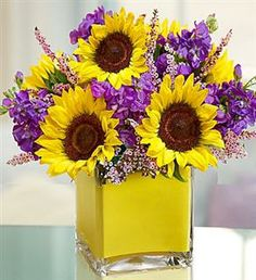 EXCLUSIVE Like a field of burgeoning wildflowers, the simple, yet stunning beauty of our truly original sunflower, stock and calcynia arrangement is enhanced by the elegant rectangular glass vase. Hand-crafted by our expert florists and accented with a bright ribbon, it's a gift that makes and enchanting expression of your feelings no matter what the occasion. - See more at: http://seivertsfloral.com/PageTemplates/ShoppingCart.aspx?PageID=133&ProductID=887458#sthash.H4D1LgX3.dpuf