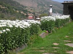 La casa de mi amiga María, un lugar para venir a soñar a La Alpujarra, en Trevélez, Granada http://casa-en-alpujarra.com/index.html
