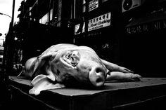 MICHAEL PENN PHOTOGRAPHY : STREET & FINE ART : THE PHILADELPHIA PROJECT (401-500)