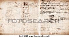 hombre de vitruvian Ver Imagen agrandada