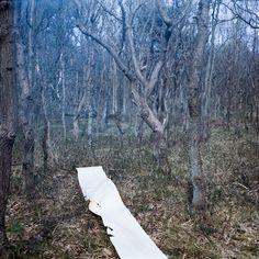 make your own path  Photo by Jorinde Reijnierse