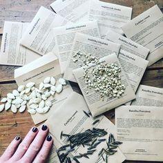 Tak tohle je pratele jen maly vzorek z me prvni kolekce seminek bylin a zeleniny Prave je balime a mam velkou radost ze se nam podarilo dat dohromady kolem  druhu  ktere si muzete objednat v eshopu wwwculina botanicacz Jake bylinky by vam treba sedly najdete i v nasich Herbarich Zahradnici uz je cas na jarni seti a u nas si urcite ty prave pro vas vybereteseminka seeds culinabotanica herbar spring jaro