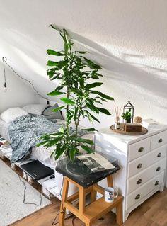 Superschönes und gemütliches Palettenbett. #diy #plants #europaletten #einrichtung #selbstgemacht