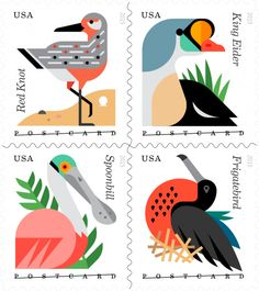 Coastal Birds, Postcard rate | USPS Stamps. June, 2015. I personally love the look and color of these stamps.