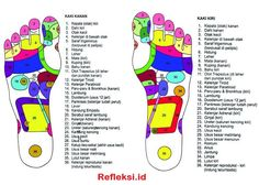 Chinese Medicine, Herbal Medicine, Health Diet, Health Fitness, Yeast Infection During Pregnancy, Study Biology, Acupressure Treatment, Reflexology Massage, Body Hacks