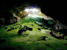 Zobacz temat - Zielona jaskinia
