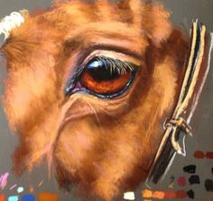 Animal Drawings Learn how to tackle tough horse eyes now available on ArtTutor as part of our Pastels Animal Module - Horse Drawings, Animal Drawings, Eye Drawings, Drawing Animals, Arte Equina, Realistic Eye Drawing, Horse Artwork, Eye Painting, Knife Painting