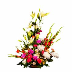 50 mix seasonal flower basket arrangement consist of 10 gladolious, 4 asiatic liies, 6 crysanthemums, 15 roses ans 15 carnations comes your way this season topped with lots of sessonal fillers. http://www.tajonline.com/valentines-day-gifts/product/v2500/sharp-brilliance/?aff=pint2014/