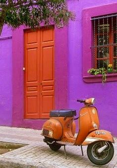 Orange & purple ✿⊱╮