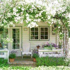 Bianco#pothooftheday #instagarden #instaflowers #instagardeners #instaflowerlovers #elegant #flower #flowers #flowersofinstagram #green #garden #gardening #landscape #colourschic #nature #natural #myhome #mygarden #myflowers #marinacanazzad #
