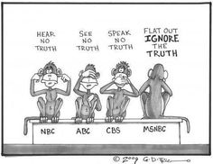 Just for my liberal friends...This cartoon nailed the liberal media bias! ~~~Thank God for FOX!