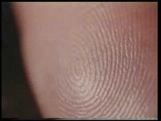 Miracles Of Quran 12 (The Fingerprints)