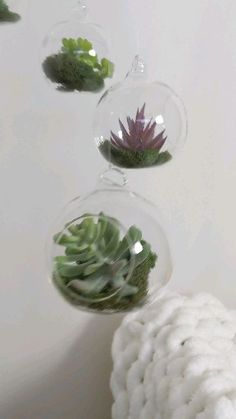 Succulent Terrarium Baby Mobile - This hanging terrarium mobile is a hand crafted work of art. It looks lovely in any living space, a - Hanging Terrarium, Succulent Terrarium, Hanging Plants, Indoor Plants, Glass Terrarium Ideas, Hanging Glass Planters, Pond Plants, House Plants, Small Succulent Plants