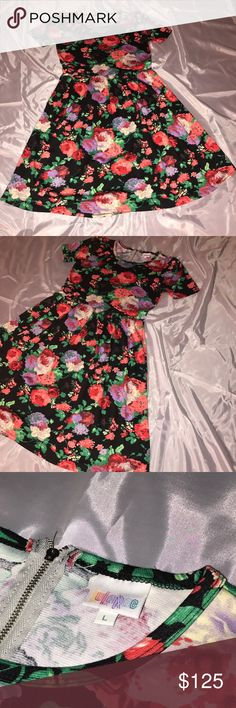 LuLaRoe Floral Amelia Dress Large LuLaRoe Floral Amelia dress in gorgeous unicorn floral print. Only worn a couple of times but still in good condition. Black background with beautiful florals. Size LARGE. Back zip, and it has POCKETS!!!!  Comes from smoke and pet free home LuLaRoe Dresses Midi