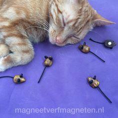 Ontzettend leuke muis magneten!