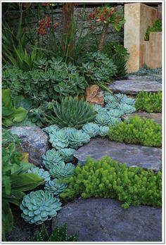 Rock Gardening Archives - Idyllic Gardens