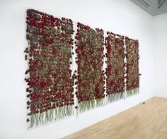 Anya Gallaccio 'preserve 'beauty'', 1991–2003 Her installations often change over time as they melt, decompose or sprout new life.