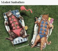 Ladies sunbathing, covering all her bits.