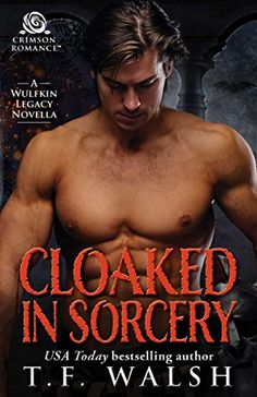 Cloaked in Sorcery (Wulfkin Legacy Book 6) by T.F. Walsh https://www.amazon.com/dp/B0756LF2XC/ref=cm_sw_r_pi_dp_x_AqD5zb08SQZ1V